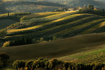 transfer-and-tours-cortona-Chianti-Wine-Tour-Paesaggio
