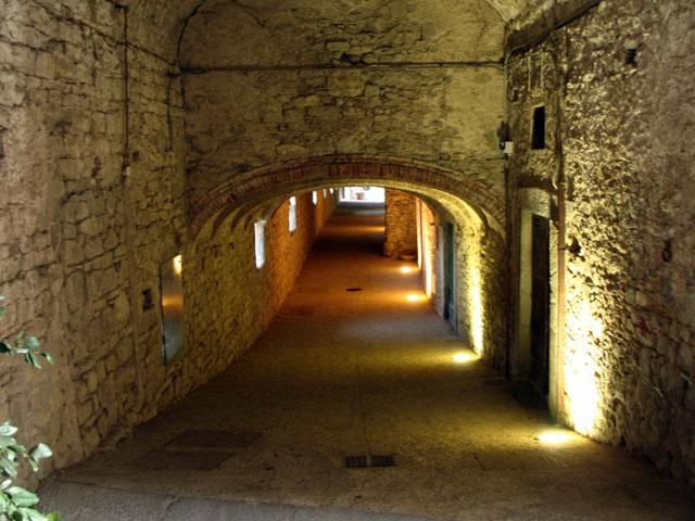 Transfer-And-Tours-Cortona-Tourist-Guide-Chianti-Wine-Cellar