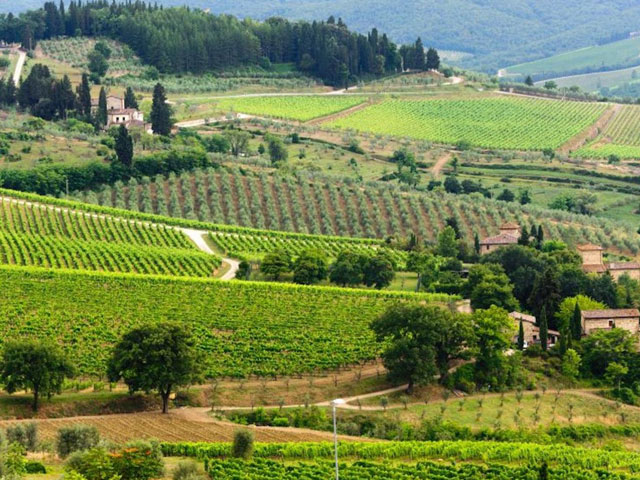 Tourist guide to Chianti