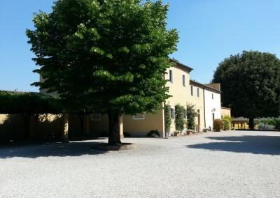 Cortona Avignonesi