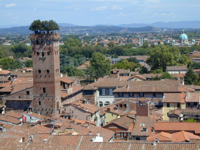 Lucca_8138