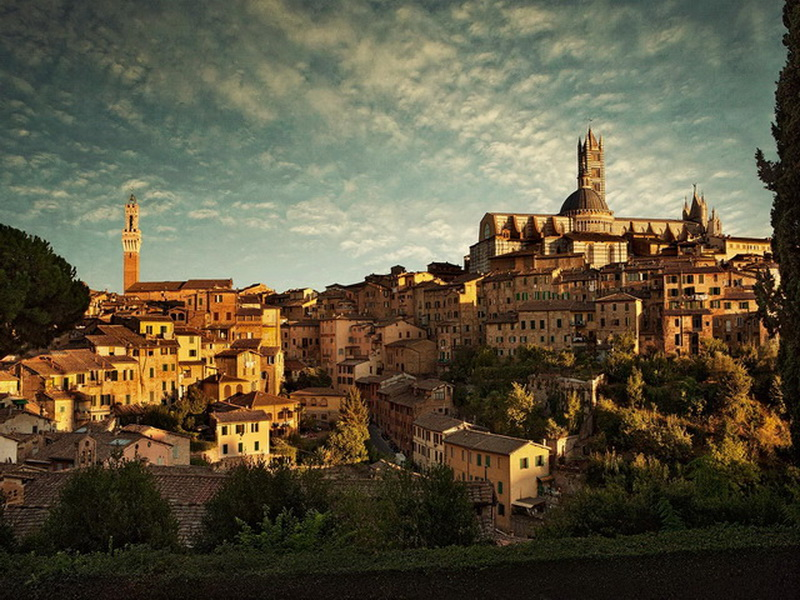 Siena-Sity
